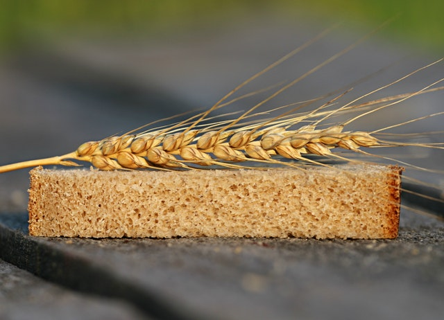 A slice of whole wheat bread with the spike of a wheat plant on top of the slice.