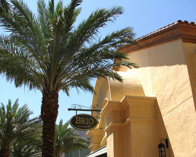 Small Brio Tuscan Grille sign in front of stucco restaurant with large palm tree