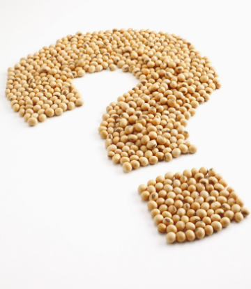 Supply Chain Scene, image of soybeans in shape of a question mark