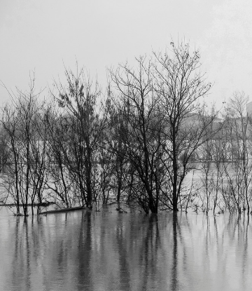 Supply Chain Scene, image of a flooded rural area