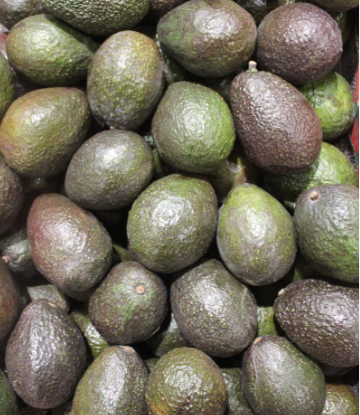 Supply Chain Scene, image of a pile of avacados