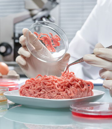SCS, image of raw ground beef in a lab with microscope